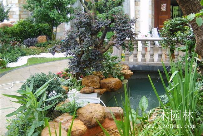 庭院鱼池设计实景 - 广州春木园林公司